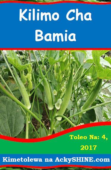 Kilimo cha Bamia
